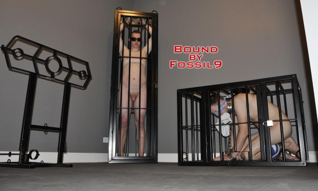 53 & 103 caged